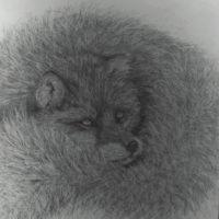 Snuggled - Karen Thomas