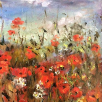 Summer Skies - Poppies