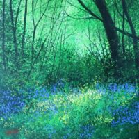 Woodland Scene - Terry Wood