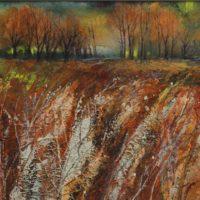 Autumn Field - Jackie Stevenson
