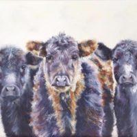 The Three Amoogos -  Jo Newson