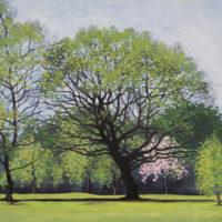 Harpenden Common Golf Course - Steve Parkes