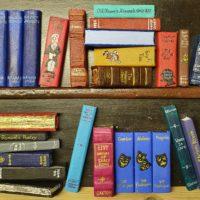 3D Books on a Shelf