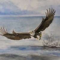 Bird on the Wing - Margaret Gannon